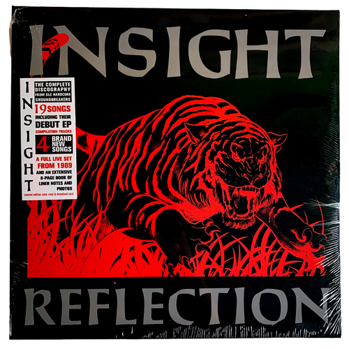 Insight: Reflection 12