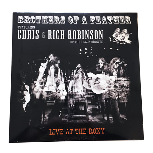 Chris and Rich Robinson: Brothers of a Feather: Live at the Roxy 12