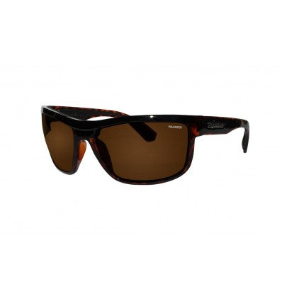 HUB-BOMB ( BROWN POLARIZED/2-TONE TORTOISE )