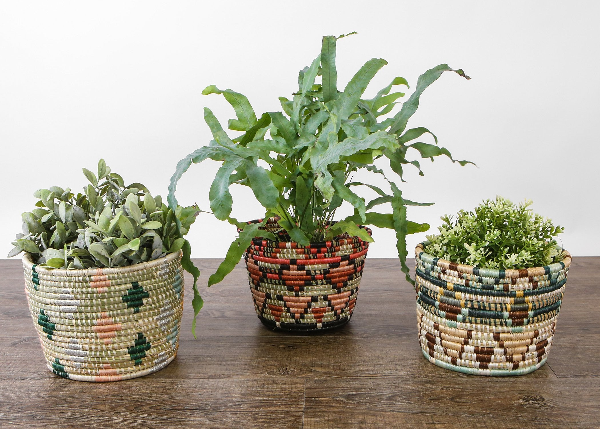 Ivy + Shades of Sand Mwiba Planter