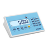 """DFWLI-DFWLKI"": STAINLESS STEEL IP68 MULTIFUNCTION WEIGHT INDICATOR"