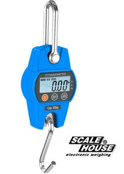 DHS SERIES CRANE SCALE