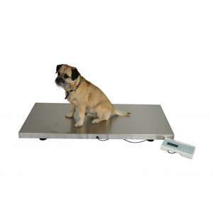 Marsden V-250 Veterinary Scale