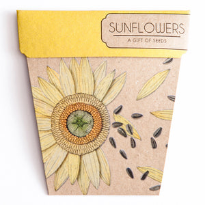 Gift of Seeds - Sunflower - Scout Newcastle