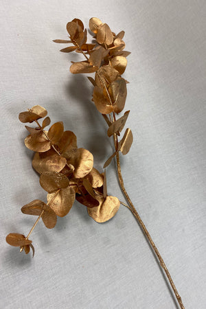 Copper Bronze Eucalyptus Stems