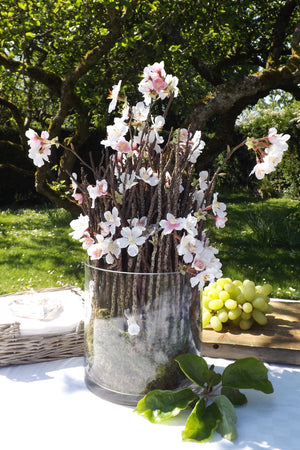 Blossom with Twigs in Glass Cylinder (Pink)