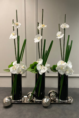 Orchid and Dianthus in Tall Black Glass Cylinder