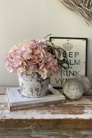 Hydrangeas in a Grey/White Washed Stone Pot (Vintage Pink/Peach)