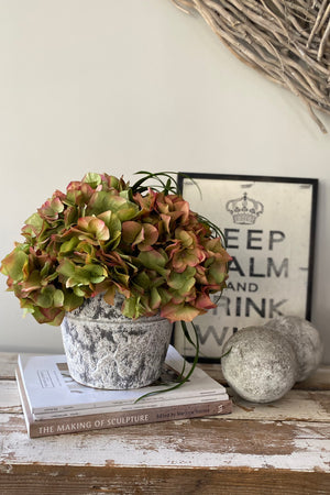 Hydrangeas in a Grey/White Washed Stone Pot (Coral/Green)