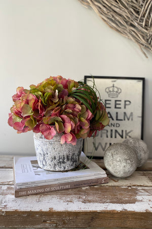 Hydrangeas in a Grey/White Washed Stone Pot (Raspberry/Green)