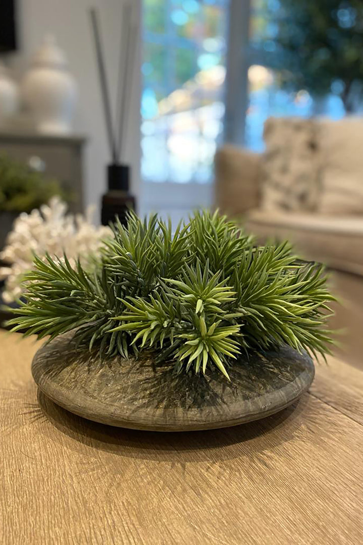 Spiky Succulents in a Slate Vase