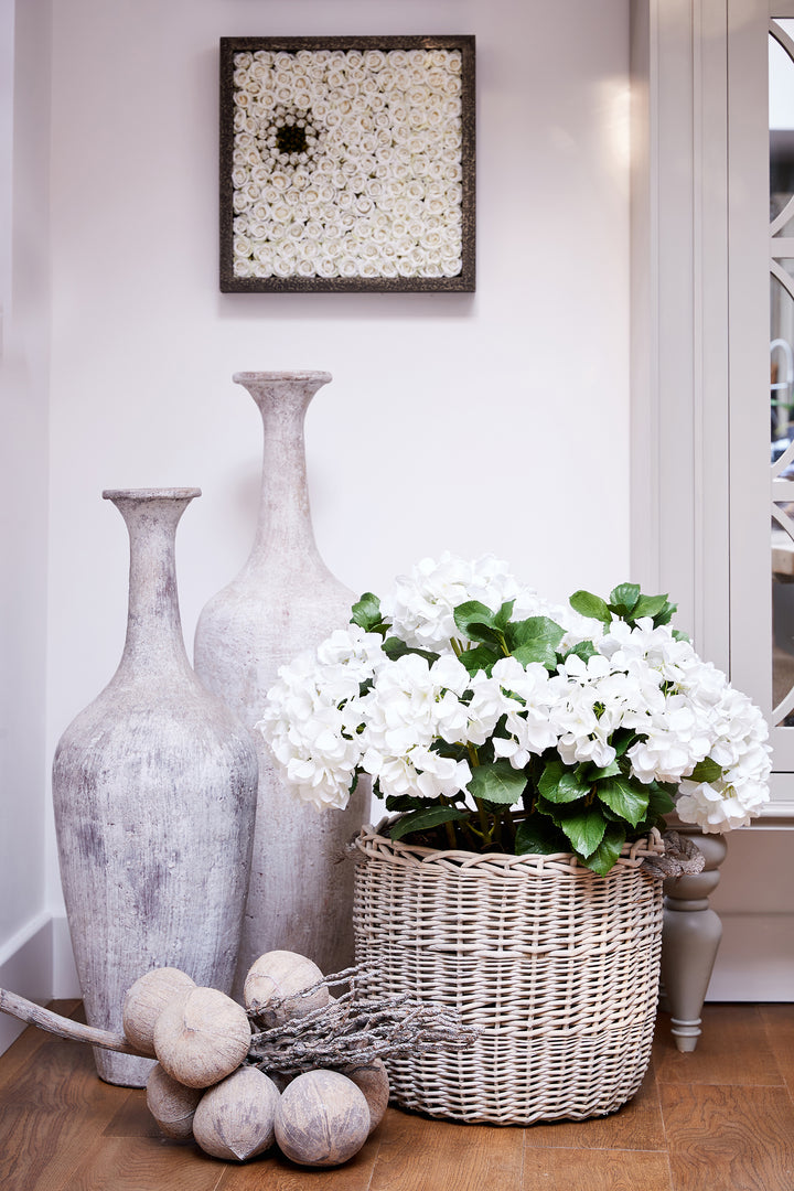 Hydrangea in Basket White