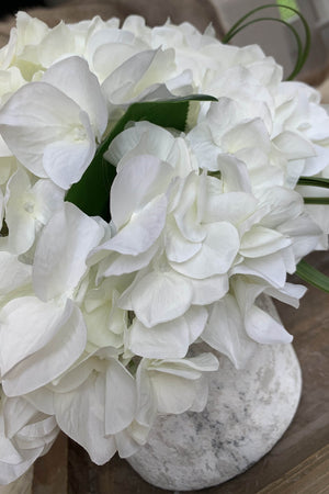 Hydrangeas in a Lime washed Stone Pot (White)