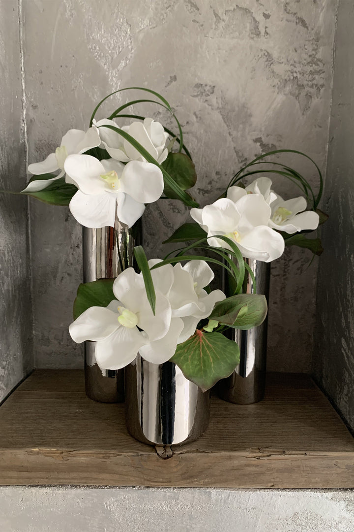 Orchids and Galax leaves in Gloss Silver Cylinders