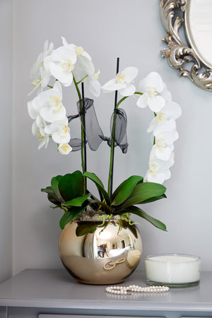 Orchids in a Rose Gold Goldfish Bowl