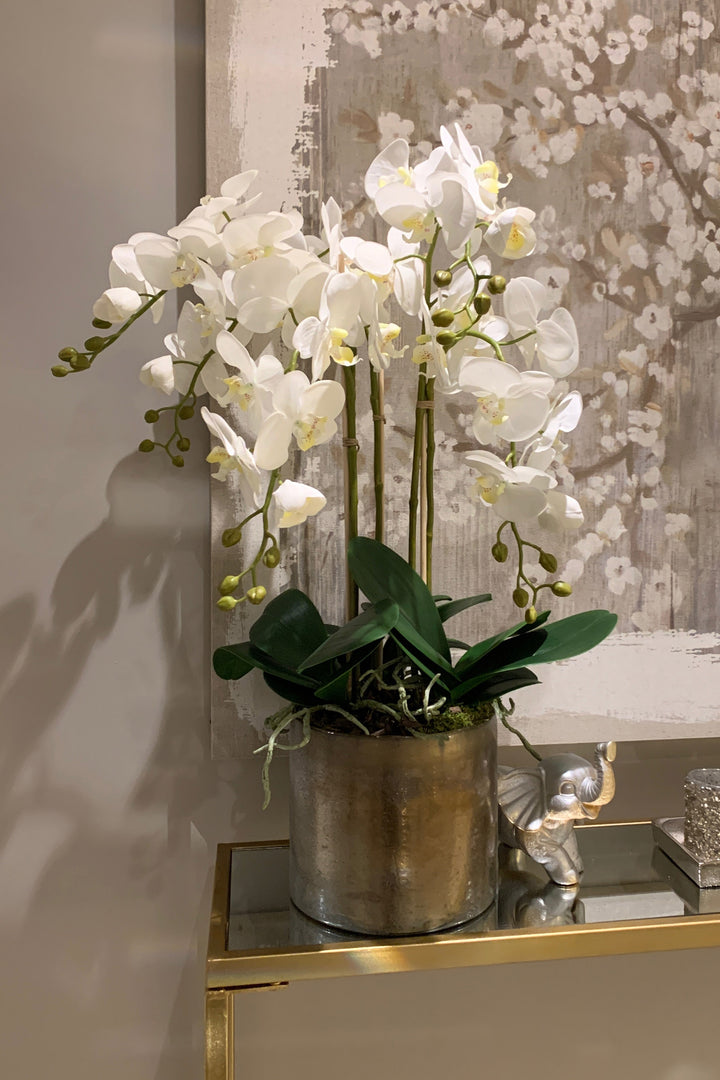 Orchids in a Smokey Gold Vase