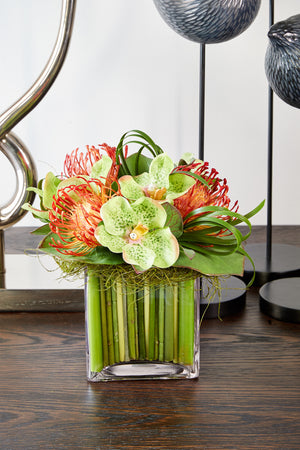 Vanda Orchids with Protea in a Stem Lined Cube