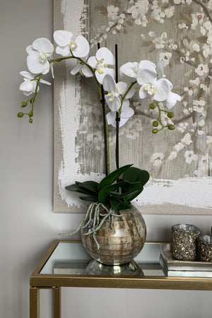 Orchid in a Champagne Bronze mottled Vase
