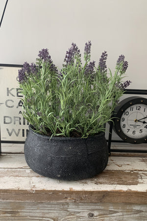 Lavender in a Black Stone Bowl