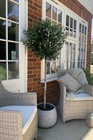 Artificial Lollipop Olive Tree