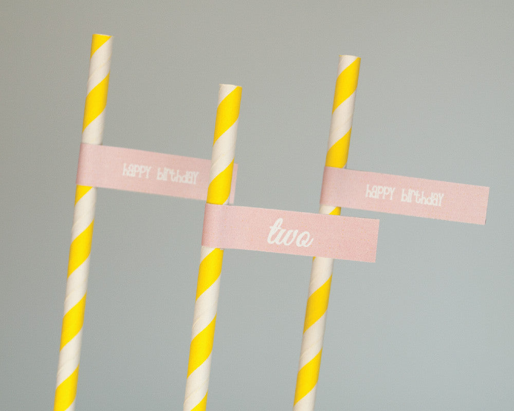Cute and Curious Straw & Flag Set - Undercover Hostess