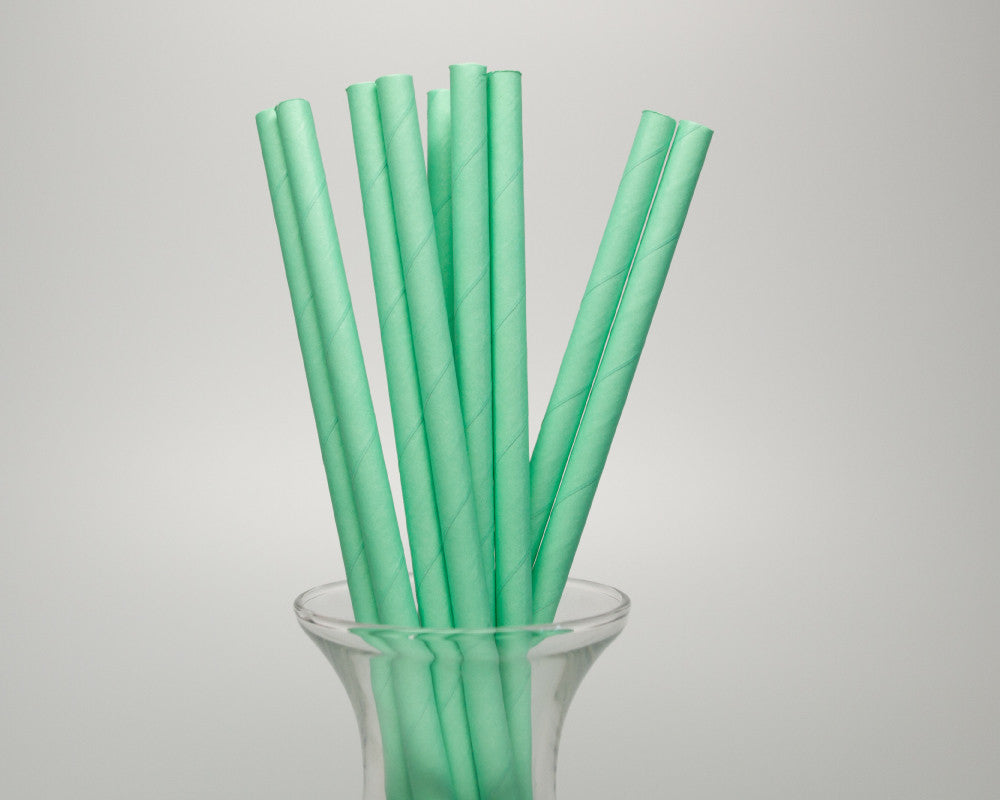 Mint Green Straws - Undercover Hostess