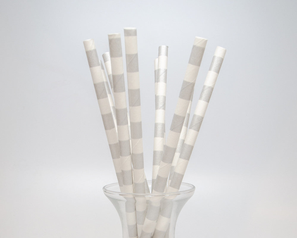 Silver Horizontal Striped Straws - Undercover Hostess
