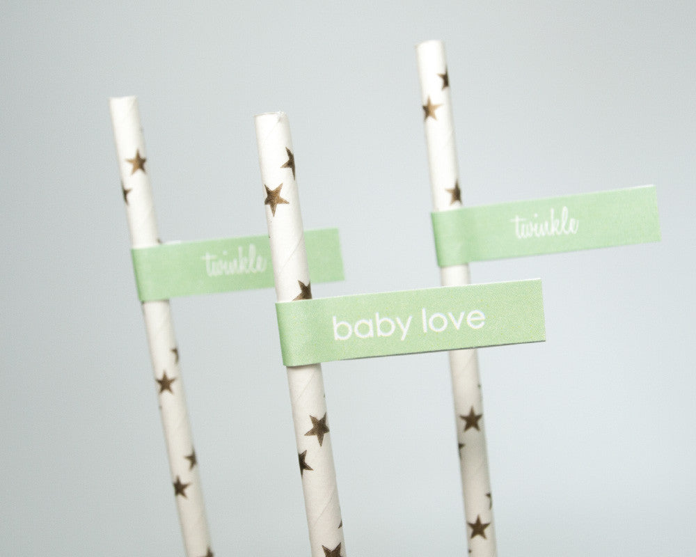 Twinkle Twinkle Little Baby Shower Straw & Flag Set - Undercover Hostess