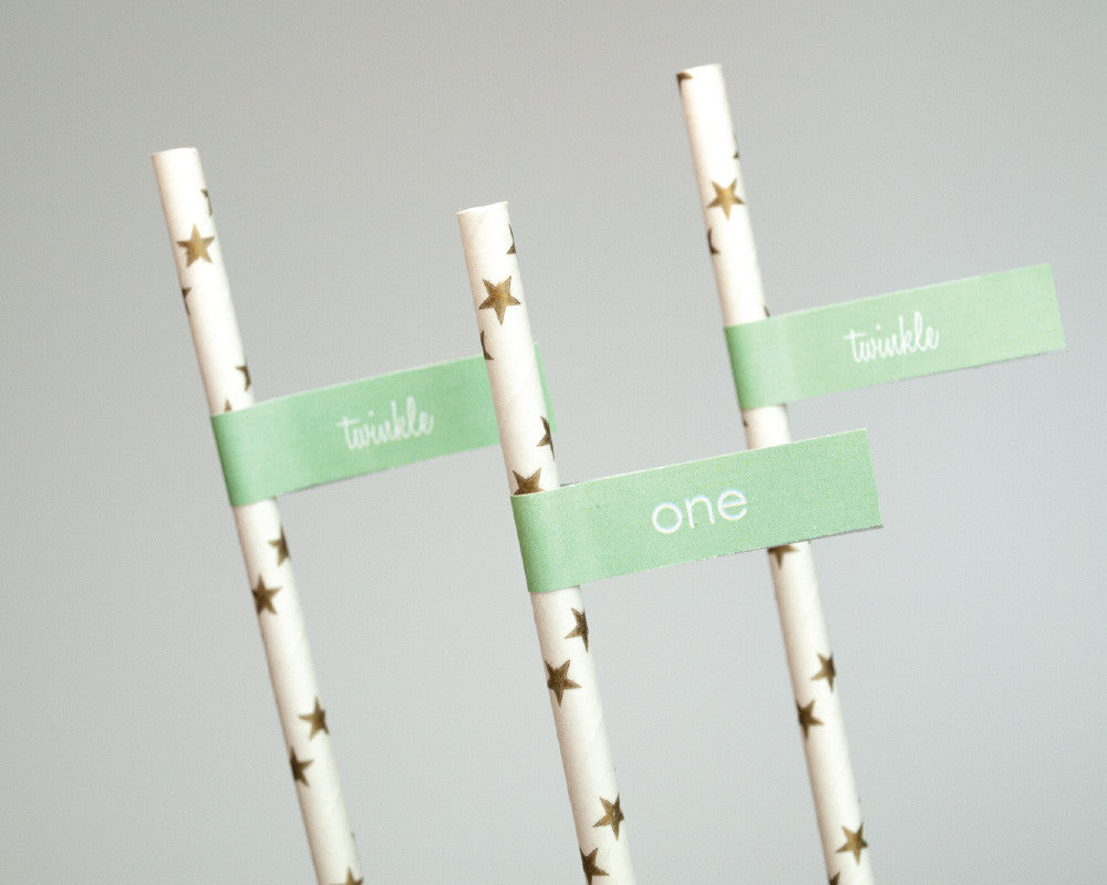 Twinkle Twinkle Little Party Straw & Flag Set - Undercover Hostess