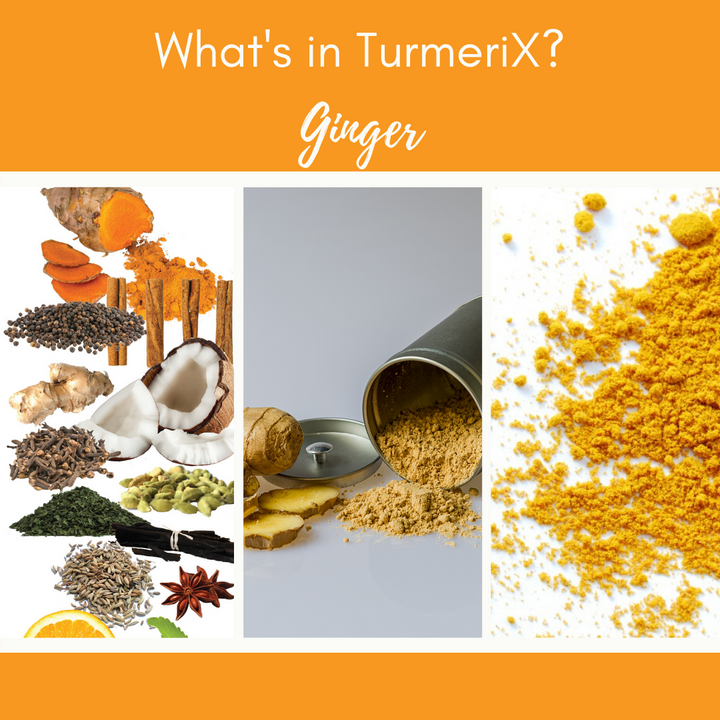 TurmeriX® | The Benefits of Ginger