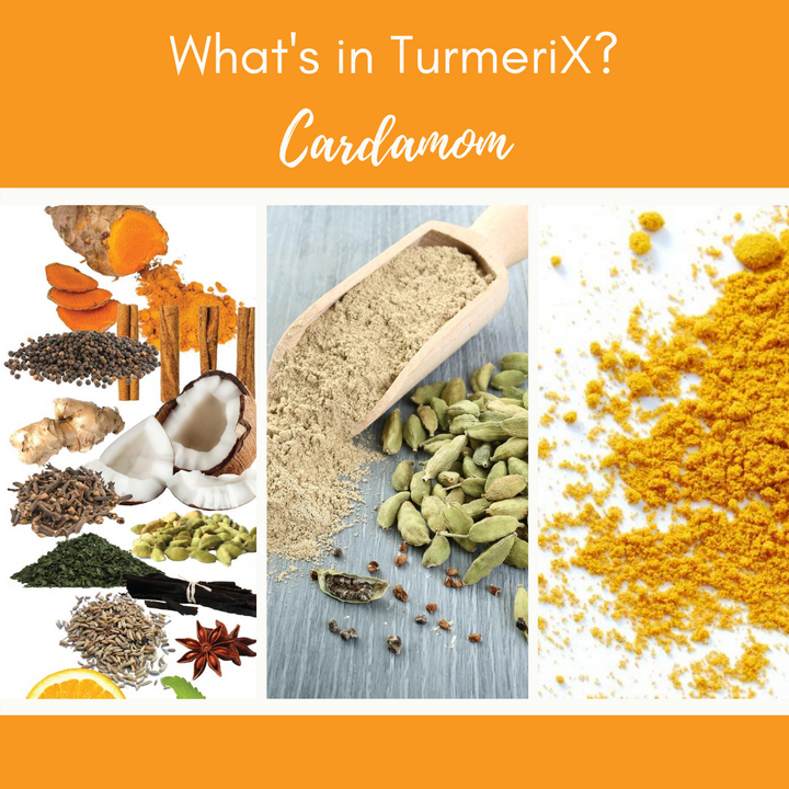 TurmeriX®| The Benefits of Cardamom