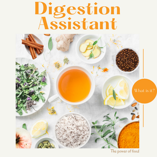 TurmeriX®| What is a Digestion Assistant?