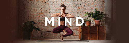 Mind Mindvalley Package