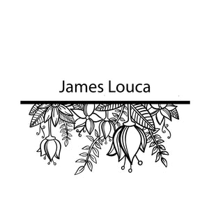 NSW James Louca