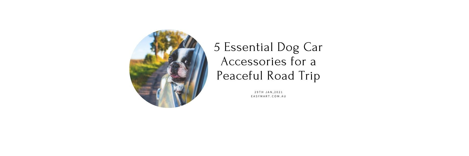 5 Essential Dog Car Accessories for a Peaceful Road Trip