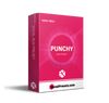Punchy Vocal (Bus Preset) - VocalPresets.com