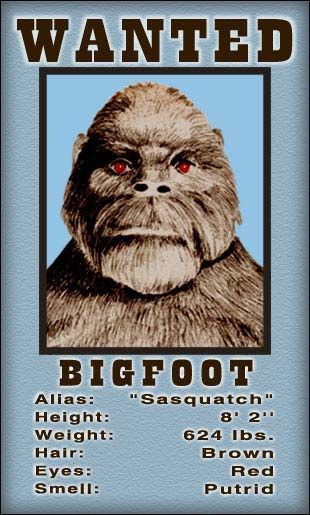 Bigfoot Wanted Magnet