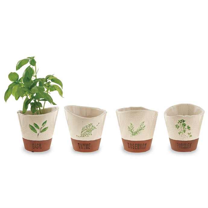 Terra & Crackle Herb Pots, Set of 4