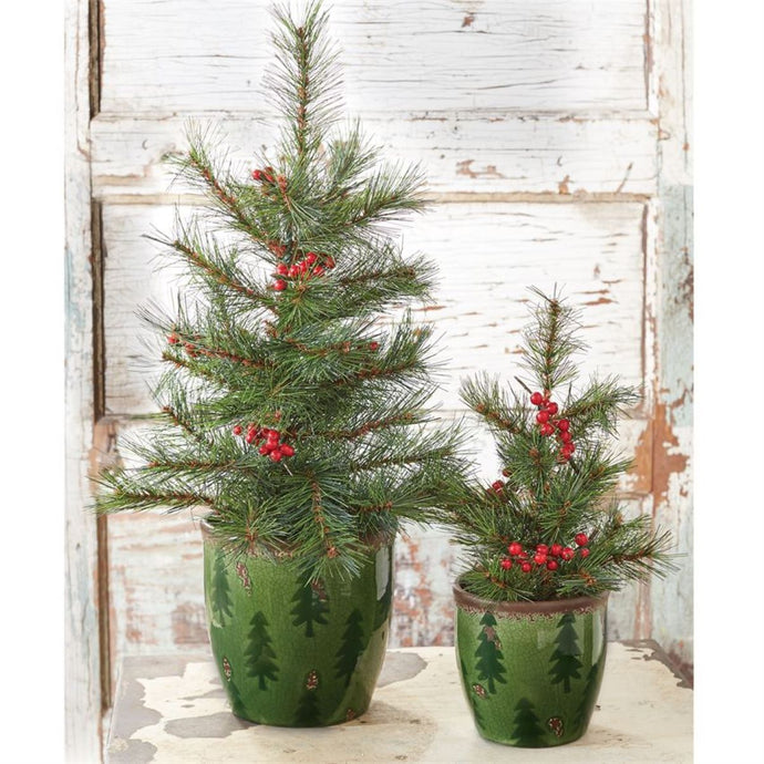 Green Ceramic Tree Pots