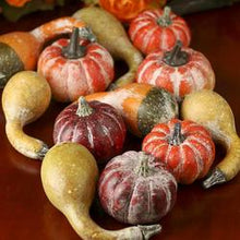 Load image into Gallery viewer, Frosted Pumpkins & Gourds, Bag of 12