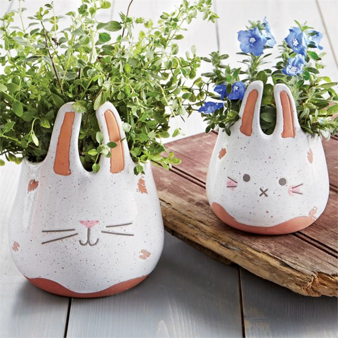 Terracotta Bunny Planter