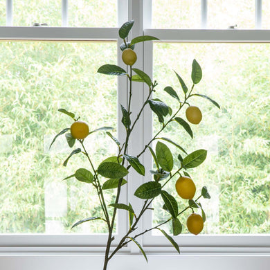 Large Lemon Branch