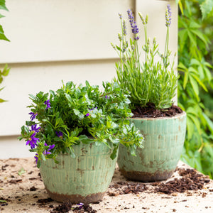 Green Glazed Planter Medium