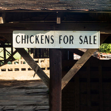 Chickens For Sale Sign
