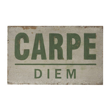 Load image into Gallery viewer, Carp Diem Wood Sign