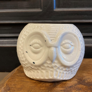 Distressed Owl Planter