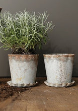 Load image into Gallery viewer, Weathered Planter & Saucer S/2