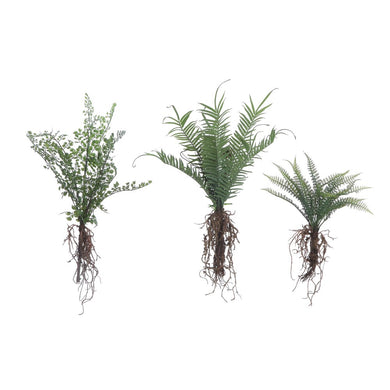 Faux Fern w/ Exposed Roots, Set of 3