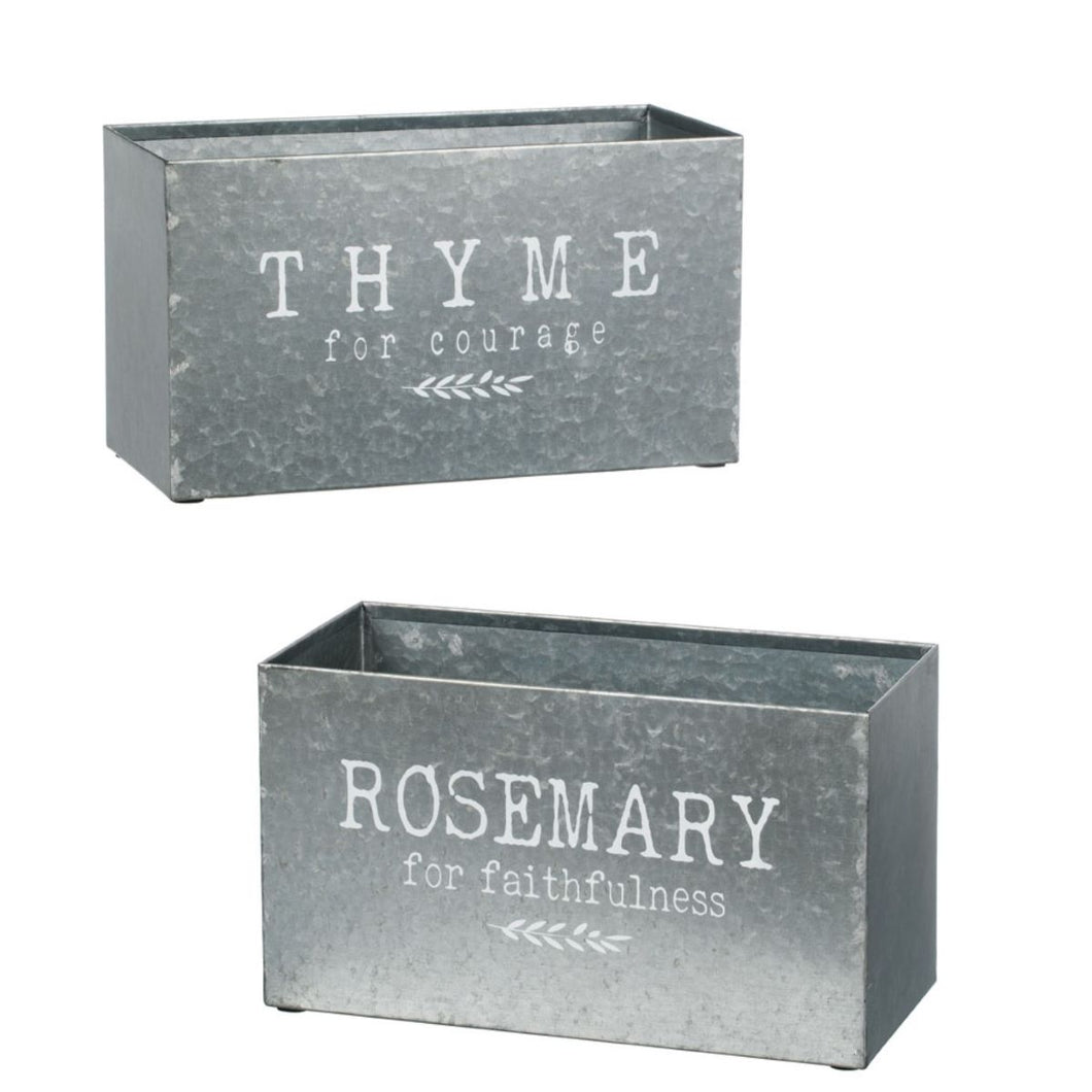 Rosemary & Thyme Planters, Set of 2