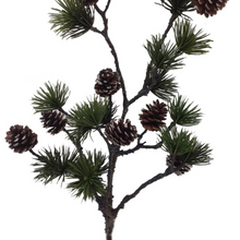 Load image into Gallery viewer, Pine Branch w/ Pine Cones